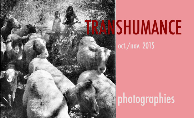 Visueel van project Transhumance 2015