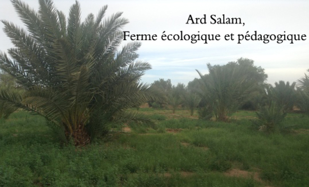 Visueel van project Ferme pilote de l'agro écologie au Maroc