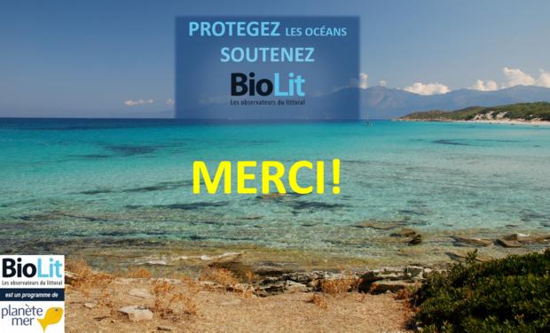 Project visual Protégez les océans, soutenez BioLit !