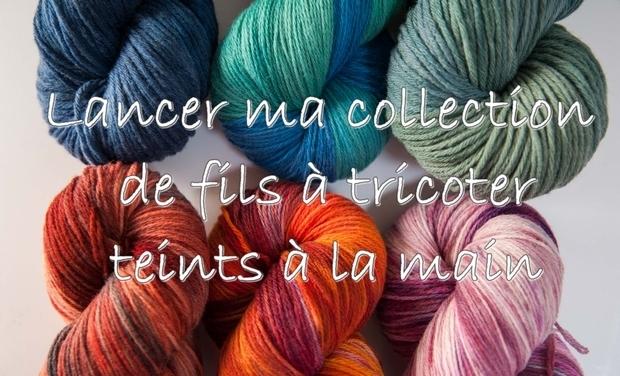 Visuel du projet Des fils à tricoter teints à la main