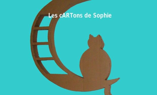 Visuel du projet Les cARTons de Sophie