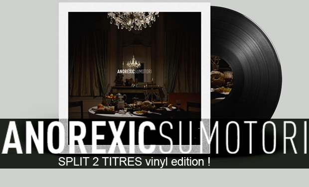 Project visual ANOREXIC SUMOTORI - SPLIT 2 TITRES vinyl edition !