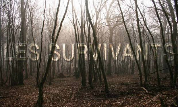 Visueel van project Les survivants