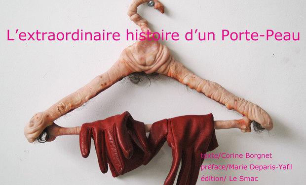 Project visual L'extraordinaire histoire d'un Porte-Peau