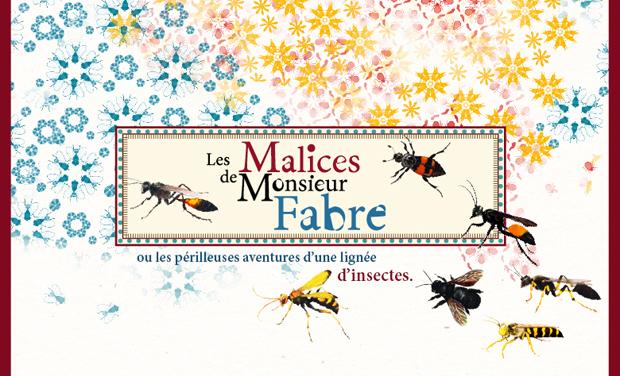 Visuel du projet Les Malices de Monsieur Fabre