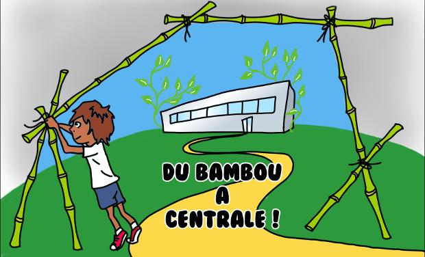 Visuel du projet Du bambou à Centrale