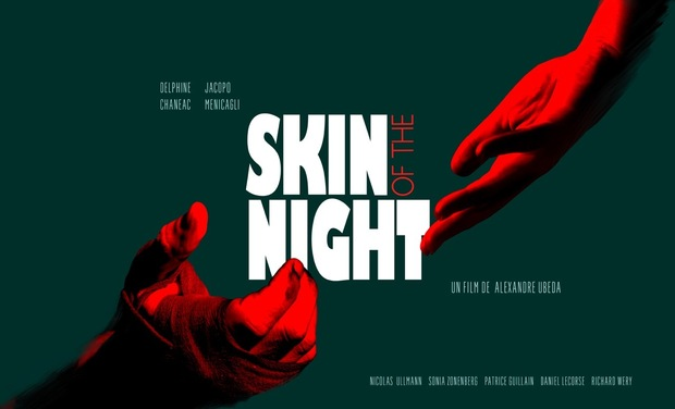Visuel du projet Skin of the Night