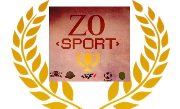Visueel van project ZOSPORT