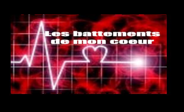 Large_couverture_les_battements_de_mon_coeur_-_copie-1447752595-1447752616