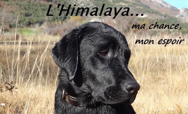 Large_l_himalaya...ma_chance__mon_espoir-1447231762-1447231805