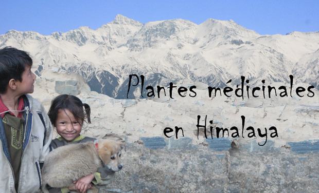 Large_enfants_et_himal_web_copie