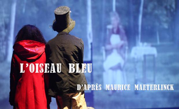 Visuel du projet L'Oiseau Bleu