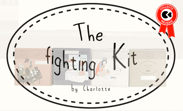 Visuel du projet The Fighting Kit