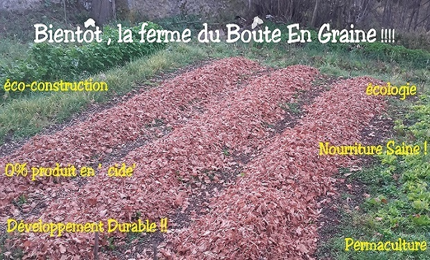 Project visual La ferme du Boute en Graine