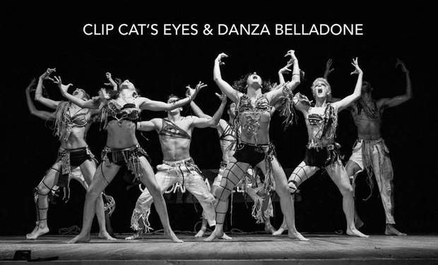 Large_visuel_clip_cat_s_eyes___danza_belladone-1448555161-1448555176