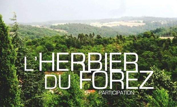 Large_lherbier_participation__640x480_-1448457295-1448457307
