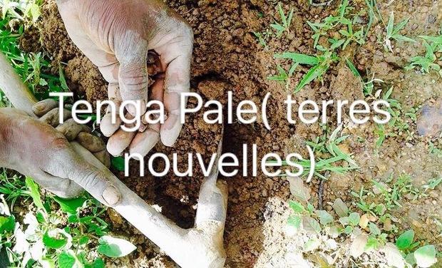 Visuel du projet Tenga Pale (Terres nouvelles)