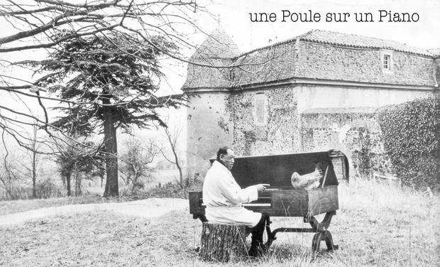 Visuel du projet Une Poule sur un Piano