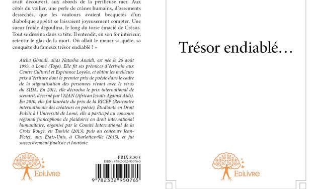 Visueel van project Trésor Endiablé... (Éditions Officielles Edilivre, Paris): Film