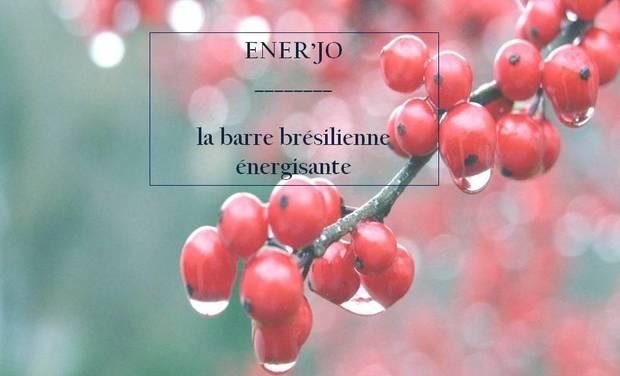Visuel du projet ENER'JO