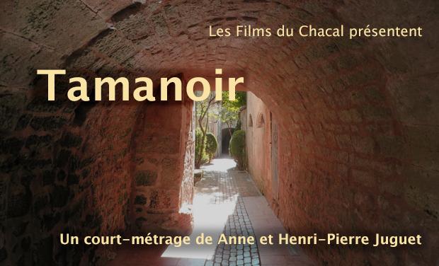 Visuel du projet Tamanoir, court métrage de fiction