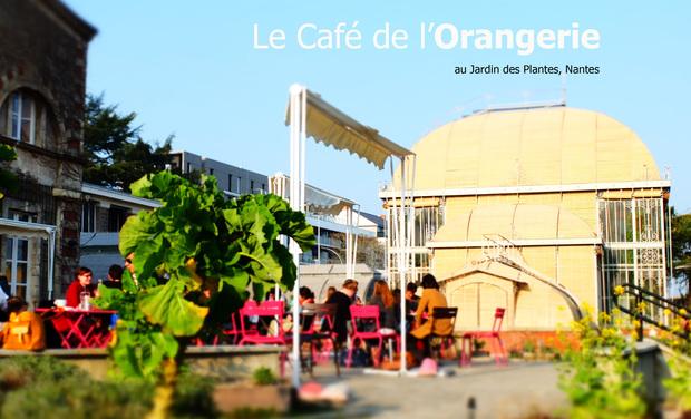 Visuel du projet Café de l'Orangerie