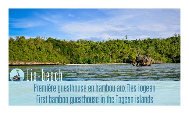 Visuel du projet Lia Beach, un projet d'éco-tourisme aux îles Togean