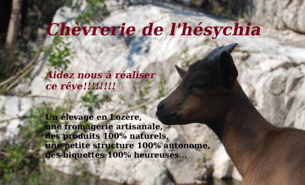 Project visual chèvrerie de l'hésychia
