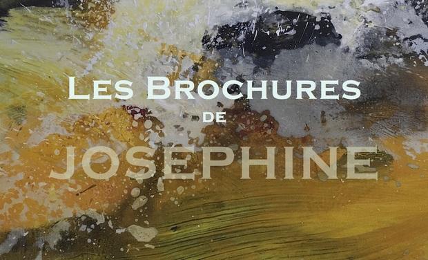 Visuel du projet La  brochure des oeuvres d'Alain Joséphine