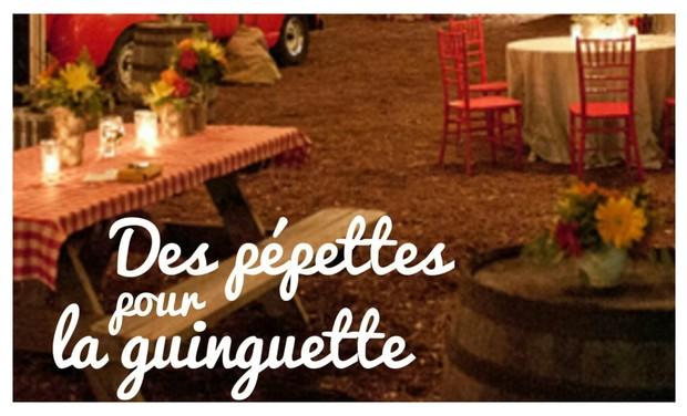 Visuel du projet Des pépettes pour la Guinguette !
