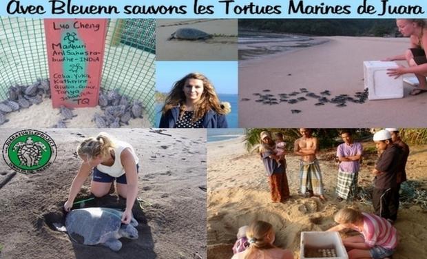 Visueel van project Avec Bleuenn Sauvons les Tortues Marines de Juara