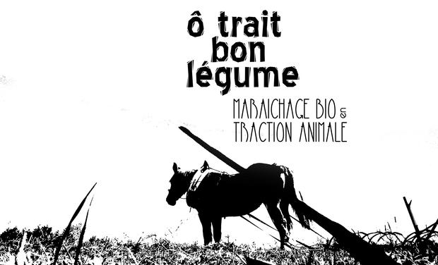 Large_visuel_en_tete_noir_et_blanc_paysage-1458643719-1458643748