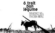Widget_visuel_en_tete_noir_et_blanc_paysage-1458643719-1458643748