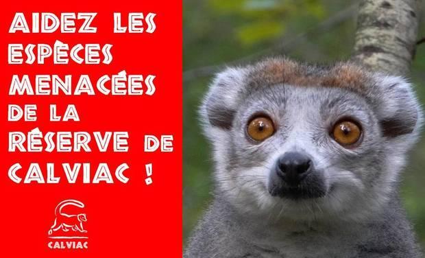 Large_couverture_-_aidez_les_esp_ces_menac_es_de_la_rc-1464848956-1464848982