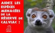 Widget_couverture_-_aidez_les_esp_ces_menac_es_de_la_rc-1464848956-1464848982
