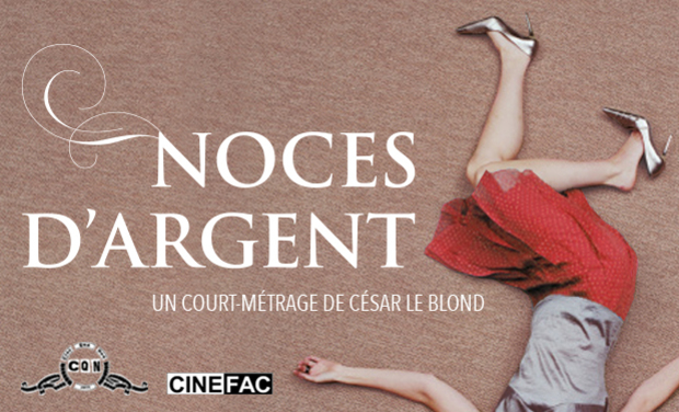 Project visual Noces d'Argent