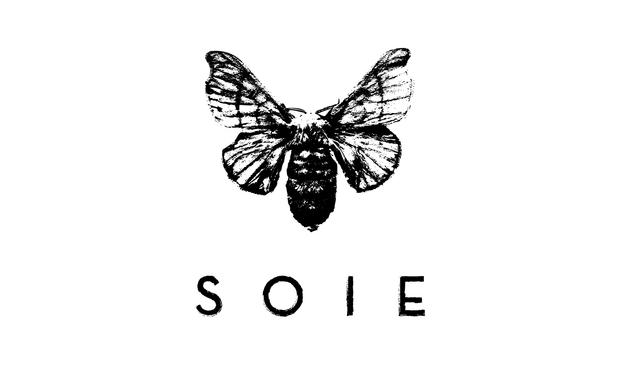 """Project visual SOIE - financement de l'EP """"689"""""""