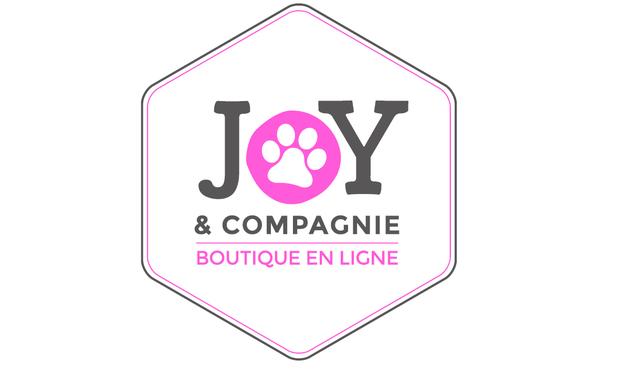 Visueel van project Joy et compagnie