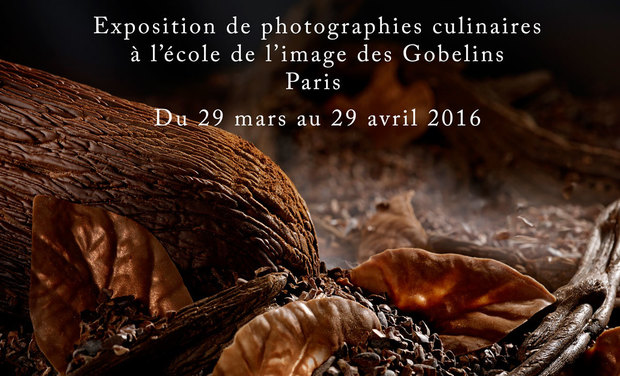 Large_expo-gobelins-1455806875-1455806893