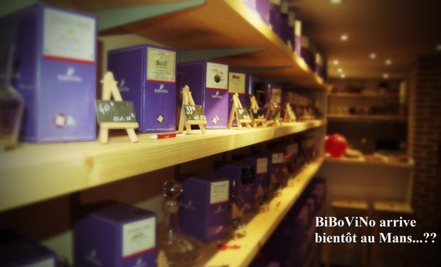 Visuel du projet Point de vente BiBoViNo au Mans