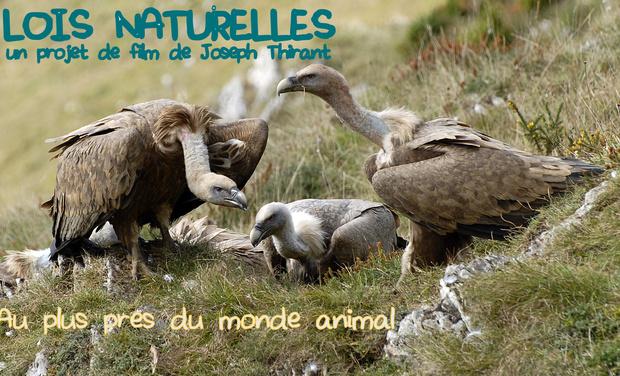 Visueel van project Lois naturelles