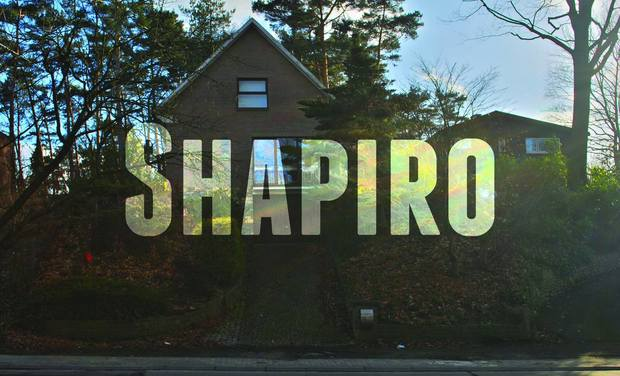 Project visual SHAPIRO