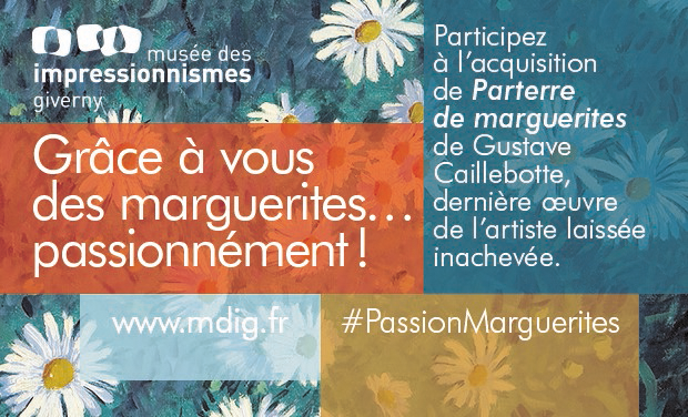 Large_accuel_acquisition_marguerites-1458576234-1458576240