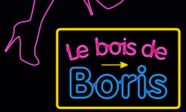 Visueel van project Le Bois de Boris