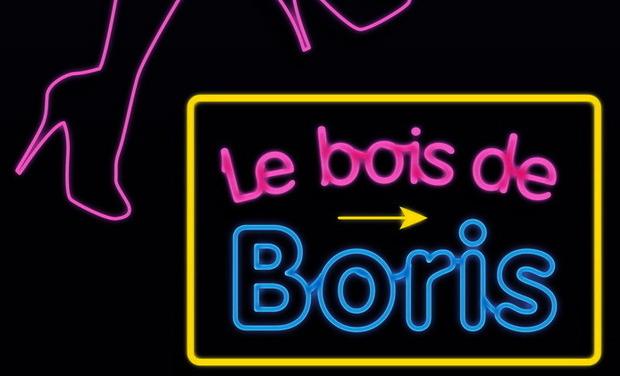 Visuel du projet Le Bois de Boris