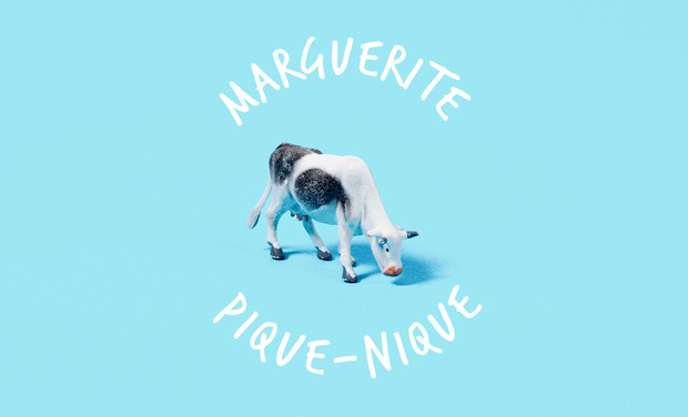 Project visual Marguerite pique-nique !