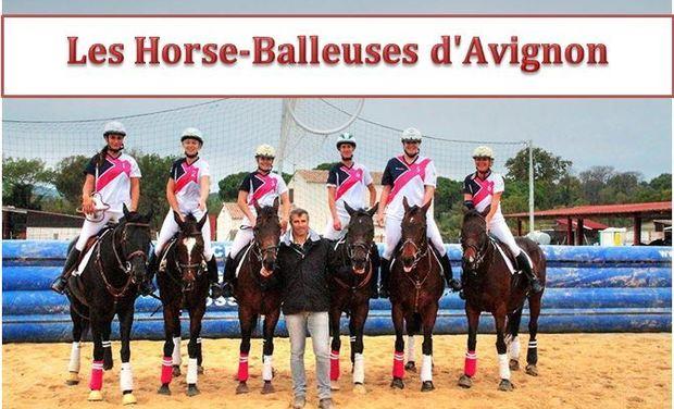 Project visual Les Horse-Balleuses d'Avignon