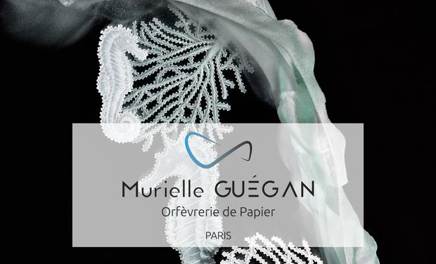 Visueel van project Orfèvrerie de Papier - Murielle GUÉGAN