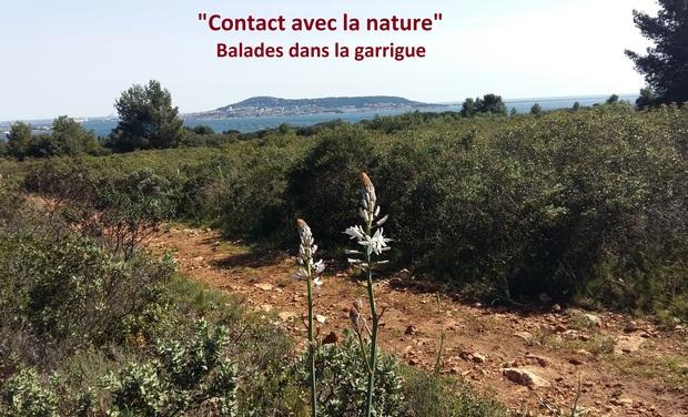 Visueel van project Contact avec la Nature