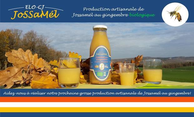 Visuel du projet Production artisanale de Jossamél au gingembre biologique